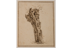 Claes van Beresteyn (Haarlem, 1629-1684) Study of a truncated willow tree (c. 1650)