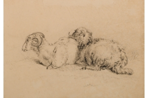 Pieter Gerardus van Os (The Hague, 1776-1839) Two Wiltshire Horn sheep (ewe and ram)