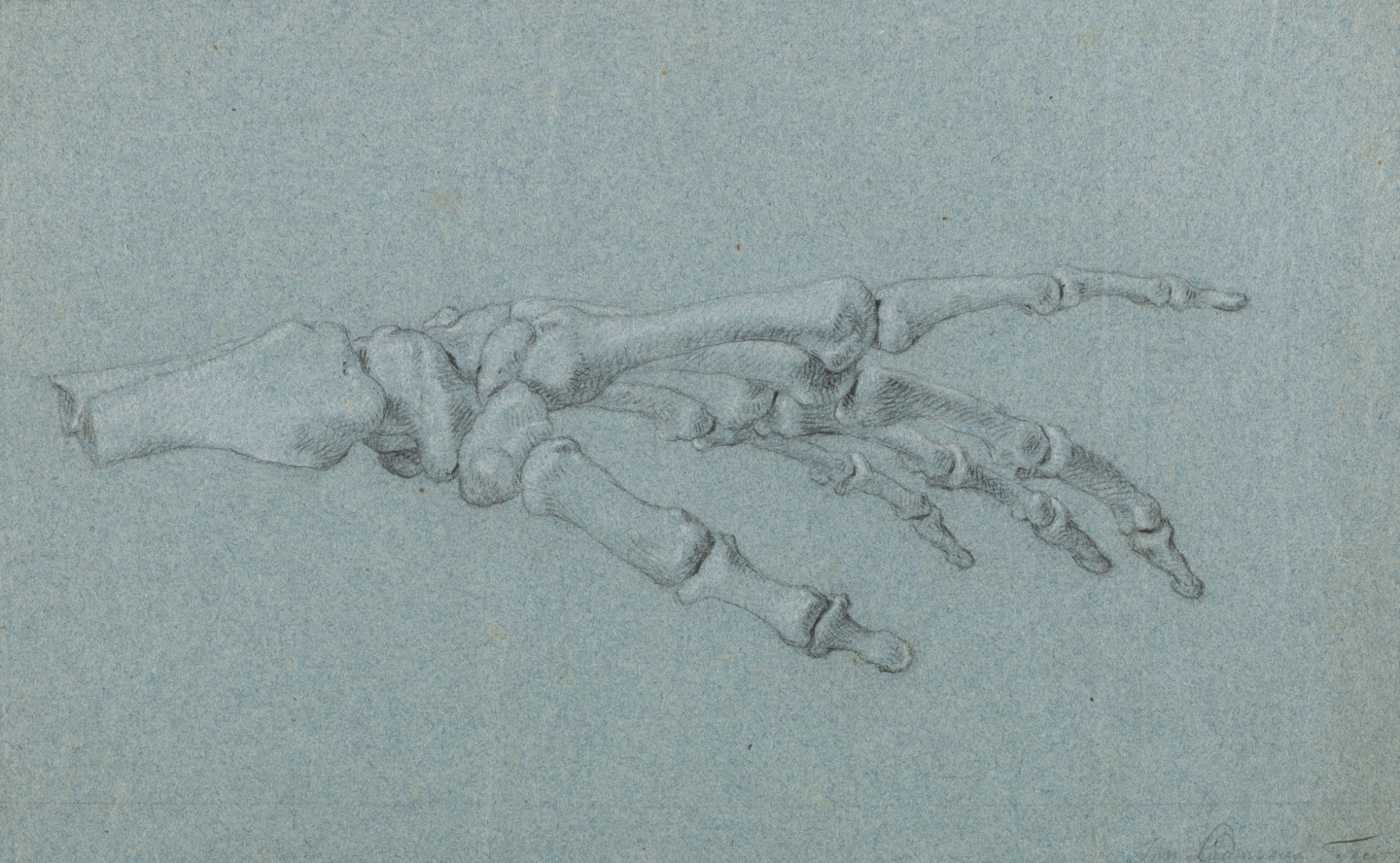 Jan l'Admiral (Amsterdam 1699-1773 Amsterdam) Study of the skeleton of a left hand