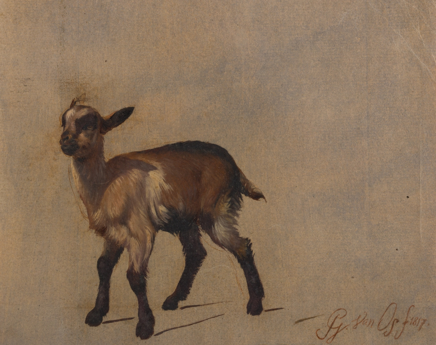 Pieter Gerardus van Os (The Hague 1776-1839 The Hague) Studies of young goats